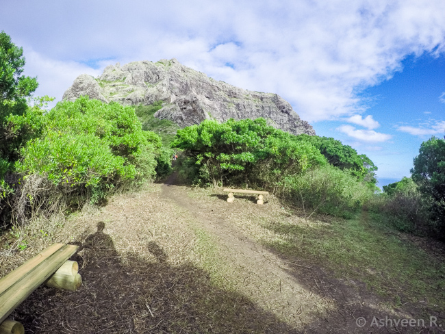 Hiking Le Morne Mountain - Picnic Area